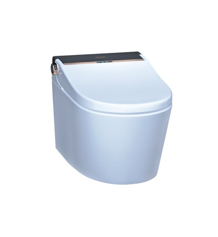 Fully Automatic Rimless Wall Hung WC Black White