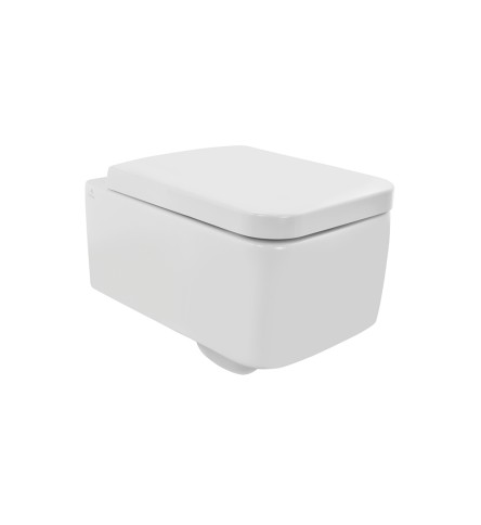 Rimless Wall Hung WC